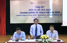 Vietnam Pepper Association not hopeful of global price recovery