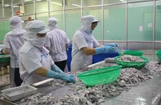 Seafood exporters advised to boost links with Chinese restaurants, hotels