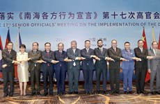 ASEAN, Chinese officials convene 17th meeting on DOC implementation