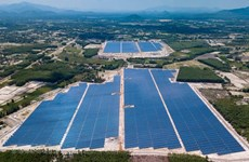 First solar power plant in Binh Dinh joins national grid