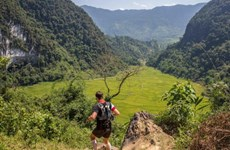 Nearly 1,000 people to run in Vietnam Jungle Marathon 2019