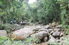 Bac Giang strives to preserve biodiversity in Tay Yen Tu