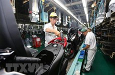 Honda Vietnam to introduce 18 new vehicle models, versions
