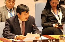 Vietnam represents ASEAN in committing to jointly protecting civilians in armed conflicts