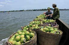 Vietnam's exports to Thailand shoot up