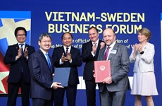 Vietnam hopes for investment from Swedish firms: PM