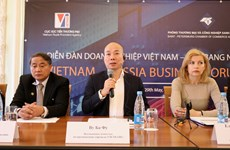 Vietnam-Russia business forum helps forge bilateral links
