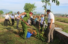 Practical activities responding to World Environment Day in Da Nang