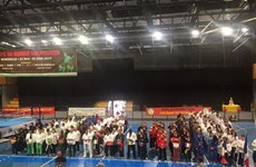 First Vietnamese martial arts world cup held in French city