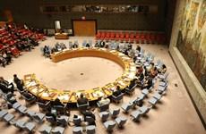 Vietnam attached to peace: Senegal Ambassador