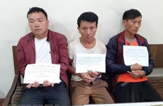 Son La: three arrested for drug smuggling