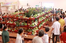 Ben Tre hosts 18th safe fruit festival