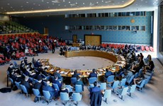 Vietnam quite able to shoulder UNSC non-permanent membership: diplomats