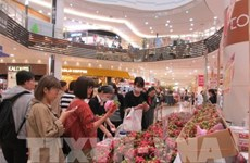 Vietnamese products seek to increase presence in Japanese market