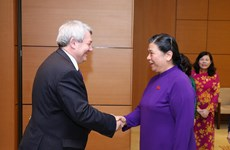 Vietnam, Czech suggested to soon work on nurse export