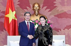 Vietnam ready to talk partnership elevation with RoK: top legislator