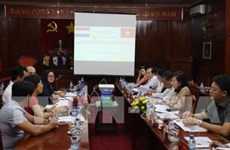 Netherlands eyes cashew industry in Binh Phuoc