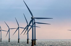 Investor permitted to start survey for giant offshore wind power farm
