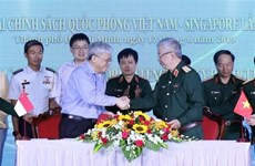 Vietnam, Singapore hold defence policy dialogue