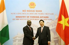 Vietnam values ties with Ivory Coast: Deputy PM