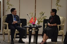 Vietnam resolved to beef up ties with Indonesia: Deputy PM