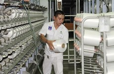 Dinh Vu Polyester Fibre Plant sees good signals after resuming operation
