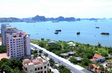 Real estate market booming in Quang Ninh