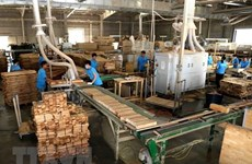 Promoting socially responsible practices in wood, seafood processing