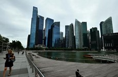 Singapore's home prices bounce to five-year high