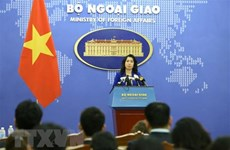 Vietnam calls for respecting national sovereignty, int'l law in East Sea