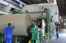 Vietnam paper industry needs to diversify product portfolio