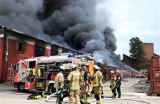 Vietnamese market in Berlin resumes operation after blaze