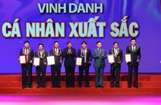 19 organisations, individuals honoured at Vietnam Glory programme