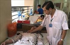 HCM City records five dengue deaths in six months