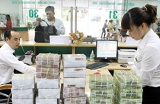 Reference exchange rate up 12 VND at week's beginning