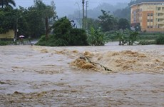 Thanh Hoa strives to be more disaster resilient this rainy season