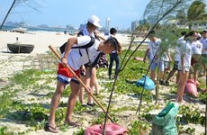 150 young Vietnamese expats join 2019 summer camp