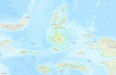 Quake with 7.3 magnitude strikes eastern Indonesia