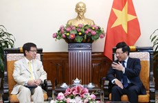 Deputy PM delighted at growing Vietnam – Japan ties