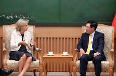 Deputy PM Pham Binh Minh receives leader of Ile-de-France region