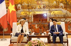 Hanoi, Ile-de-France region to solidify cooperation