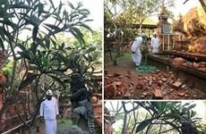6.1-magnitude quake hits Bali resort island