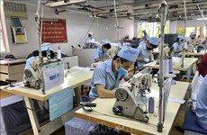 Southern provinces ready for billion-dollar FDI projects