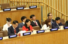 Vietnam attends Supreme Audit Institution leadership meeting in New York