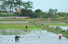 Ninh Binh: New-style countryside building efforts prove fruitful