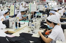Vietnam spends 11.4 billion USD on garment material imports in H1