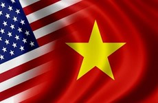 VN-US comprehensive partnership develops fruitfully: spokesperson