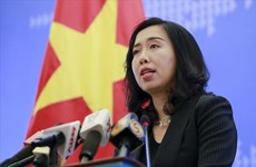 Vietnam seriously delivers on WTO's commitments: Spokesperson