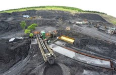 Vietnam's coal imports increases sharply by mid-July