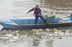 HCM City takes steps to reduce pollution in canal networks